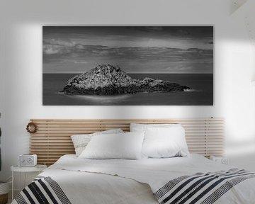 Mystery Island van Steven Driesen