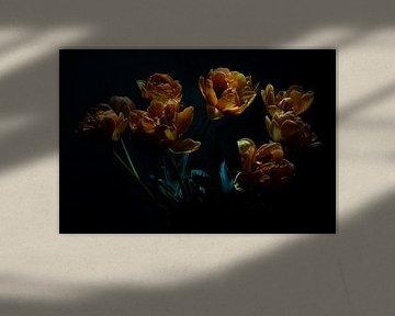 Dancing Tulips von Bart Uijterlinde
