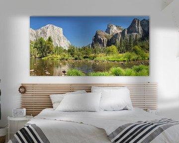 El Capitan und Merced River im Yosemite Valley, Yosemite-Nationalpark, Kalifornien, USA von Markus Lange