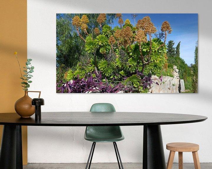 Sfeerimpressie: Bloeiende vetplant op een stenen muurtje aan de Costa Blanca van Gert Bunt