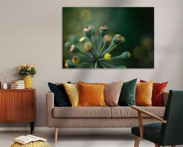 Klimop Blüte von KB Design & Photography (Karen Brouwer)