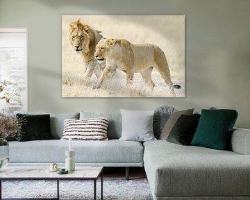 Twee leeuwen op Afrikaanse savanne van Melissa Peltenburg