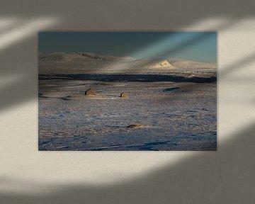 Chalets isolés dans la plaine. sur Marco Lodder
