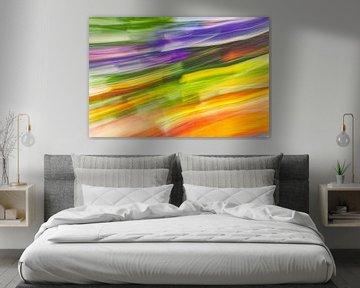 regenboog? van Jan Peter Jansen