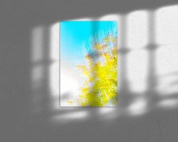 geel blauw met wit van Jan Peter Jansen