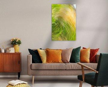 krass in grün und gelb von Jan Peter Jansen