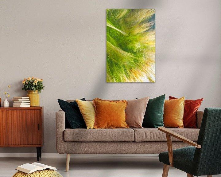 Beispiel: Hohes Gras von Jan Peter Jansen
