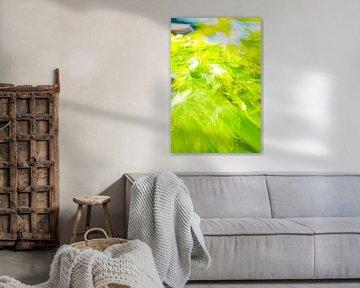 5 tinten groen met blauw van Jan Peter Jansen