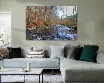 River in the woods van Roger Hagelstein