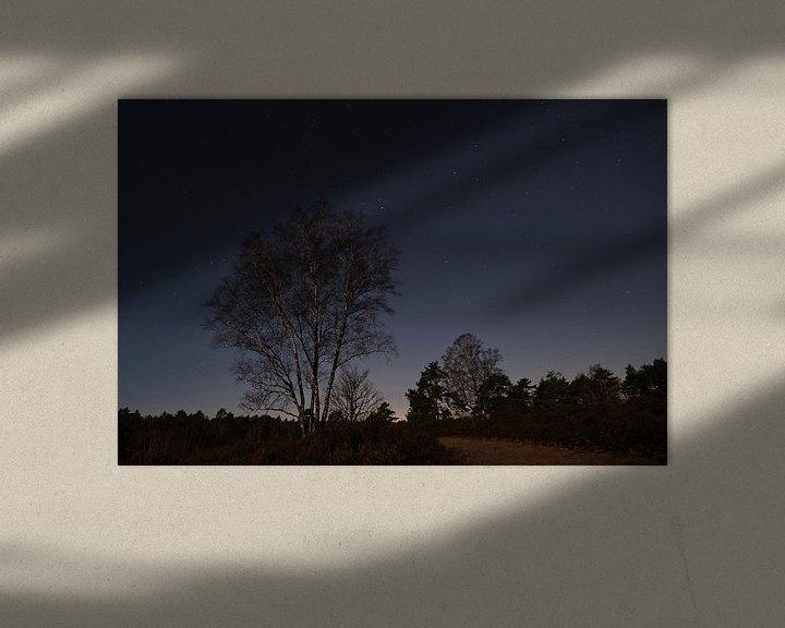 Beispiel: Dunkel Ruht die Heide von Borg Enders