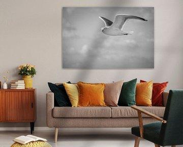 Vliegende zeemeeuw 1, Schiermonnikoog - Zwart Wit van Janet Kleene
