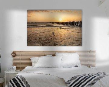 zoutelande zeeland zonsondergang van anne droogsma