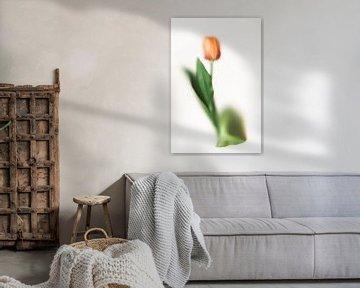 Abstracte tulp van Lotje van der Bie Fotografie