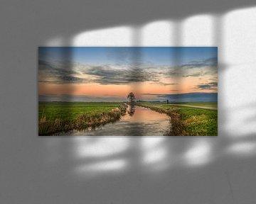 Graben und Baum bei Sonnenuntergang in Gaasterland, Friesland. von Harrie Muis