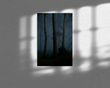 Gloomy trees