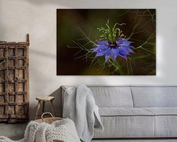Gretchen-im-Busch - Blauer Geist von Dagmar Hijmans