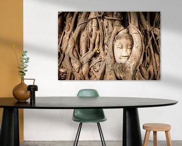 Kopf von Buddha in Baum verschmolzen von Lisanne de Beun