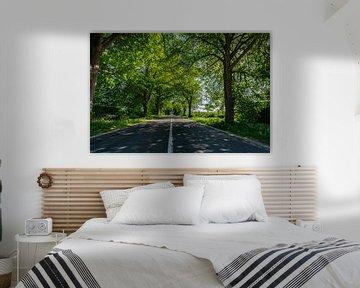 Deutsche Alleenstraße auf Rügen von GH Foto & Artdesign