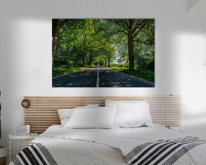 Beispiel: Deutsche Alleenstraße auf Rügen von GH Foto & Artdesign