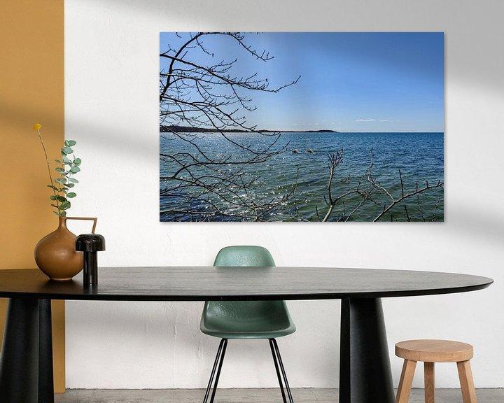 Beispiel: Am Ufer in der Goor, Insel Vilm, Lauterbach auf Rügen von GH Foto & Artdesign