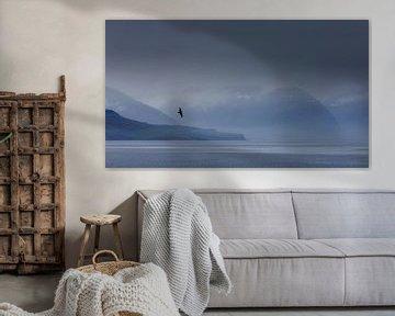 Raaf voor fjordenlandschap van Sam Mannaerts Natuurfotografie