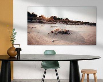 Strand von Juliusruh (Rügen) von Denny Lerch