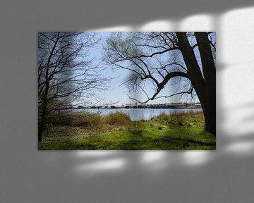 Yachhhafen Goor, Insel Vilm, Lauterbach auf Rügen von GH Foto & Artdesign