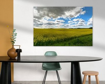 Verkrachtingsveld bij Sehlen van GH Foto & Artdesign