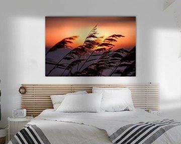 Warme zonsondergang op een koude kille winterse dag van Koen Hoekemeijer