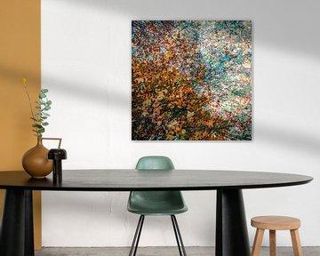 Bladeren in alle kleuren van de herfst van Idema Media