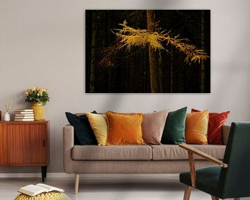 Branche de pin enveloppée d'or sur Marjo Snellenburg