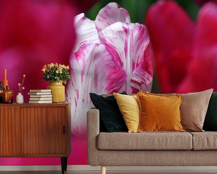 Sfeerimpressie behang: Tulp van Syl de Mooy