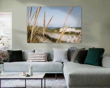 Seegras in den Dünen von Schoorl, entlang der niederländischen Küste   Fine Art Nature Photography i von Evelien Lodewijks