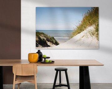 Seegras und Blick auf das Meer bei Schoorl, entlang der niederländischen Küste   Fine Art Naturfotog von Evelien Lodewijks
