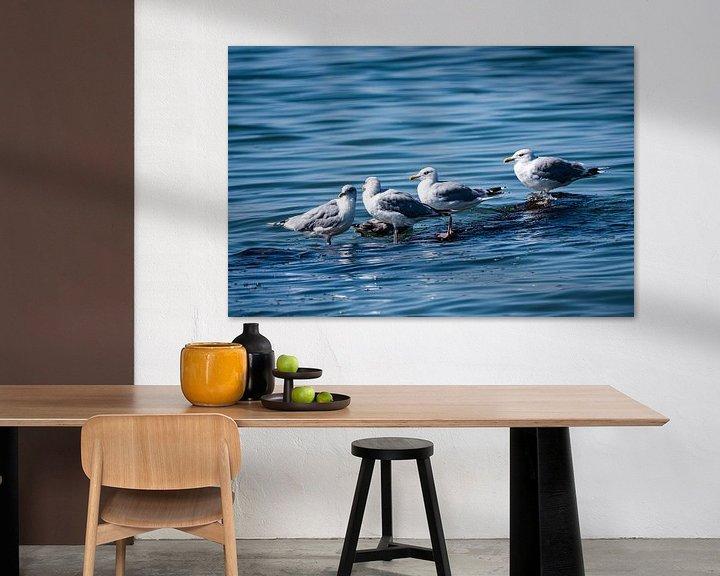 Beispiel: Warten - Möven im Meer von Max Steinwald