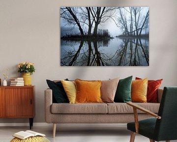 Bäume im Bach von Sam Mannaerts