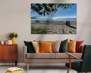 Strandkörbe im Sonnenlicht, Naturstrand Lobbe von GH Foto & Artdesign