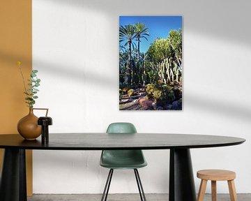 Palmen rn Kakteen im Park Palmeral in Elche von Gert Bunt