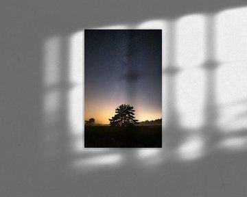Mystic night. van Corné Ouwehand