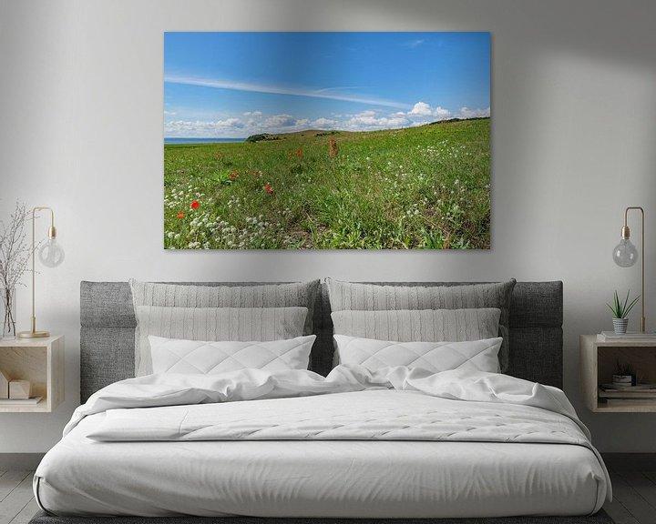 Beispiel: Klatschmohn und Wiesenblumen, Groß Zicker,  Rügen von GH Foto & Artdesign