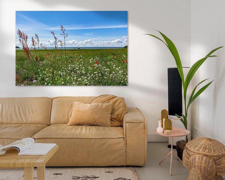 Beispiel: roter Klatschmohn und Wiesenblumen, Groß Zicker,  Rügen von GH Foto & Artdesign
