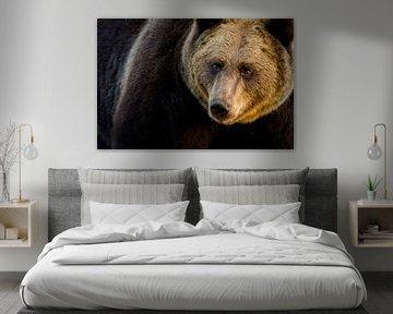 Portret van Bruine beer van Sam Mannaerts