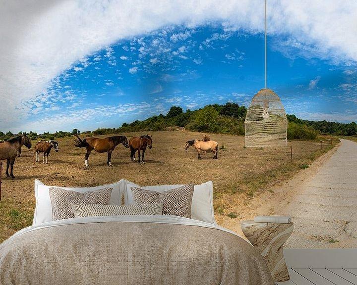 Beispiel fototapete: Pferdekoppel auf der Insel Hiddensee von GH Foto & Artdesign