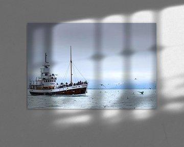 Bultrug en toeristenboot van Sam Mannaerts