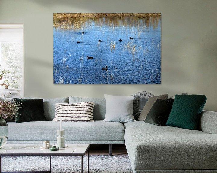 Sfeerimpressie: Watervogels in een meertje van het natuurgebied El Hondo in Spanje van Gert Bunt