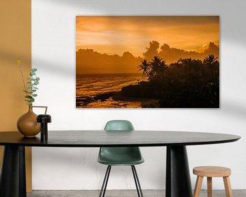 Sonnenuntergang mit einer Silhouette von Palmen im Hintergrund von Art Shop West