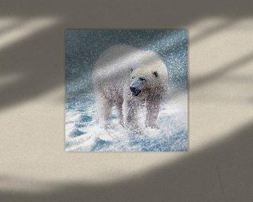 Polarbär im Schneesturm von Uwe Frischmuth