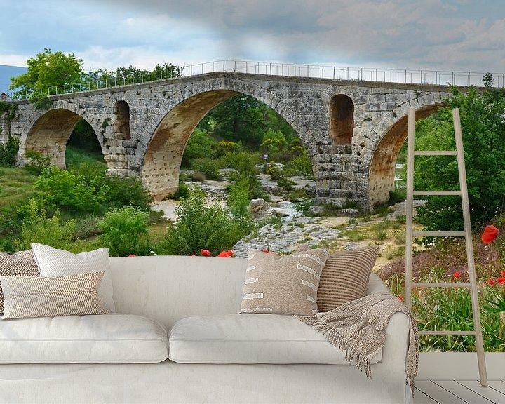 Impression: Pont Julien en arche romaine en pierre sur le Calavon près d'Apt (France) avec au premier plan un ch sur Gert Bunt