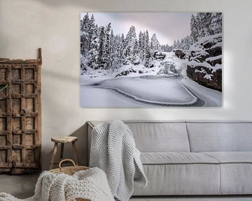Frozen waterfall van Marco Lodder