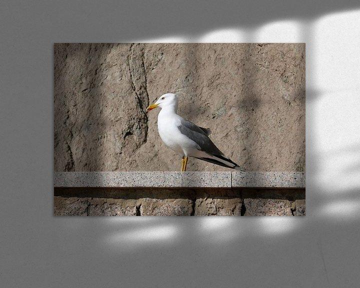 Sfeerimpressie: Zeemeeuw die zich op een muurtje tegen de rotsen koestert in de zon van Gert Bunt